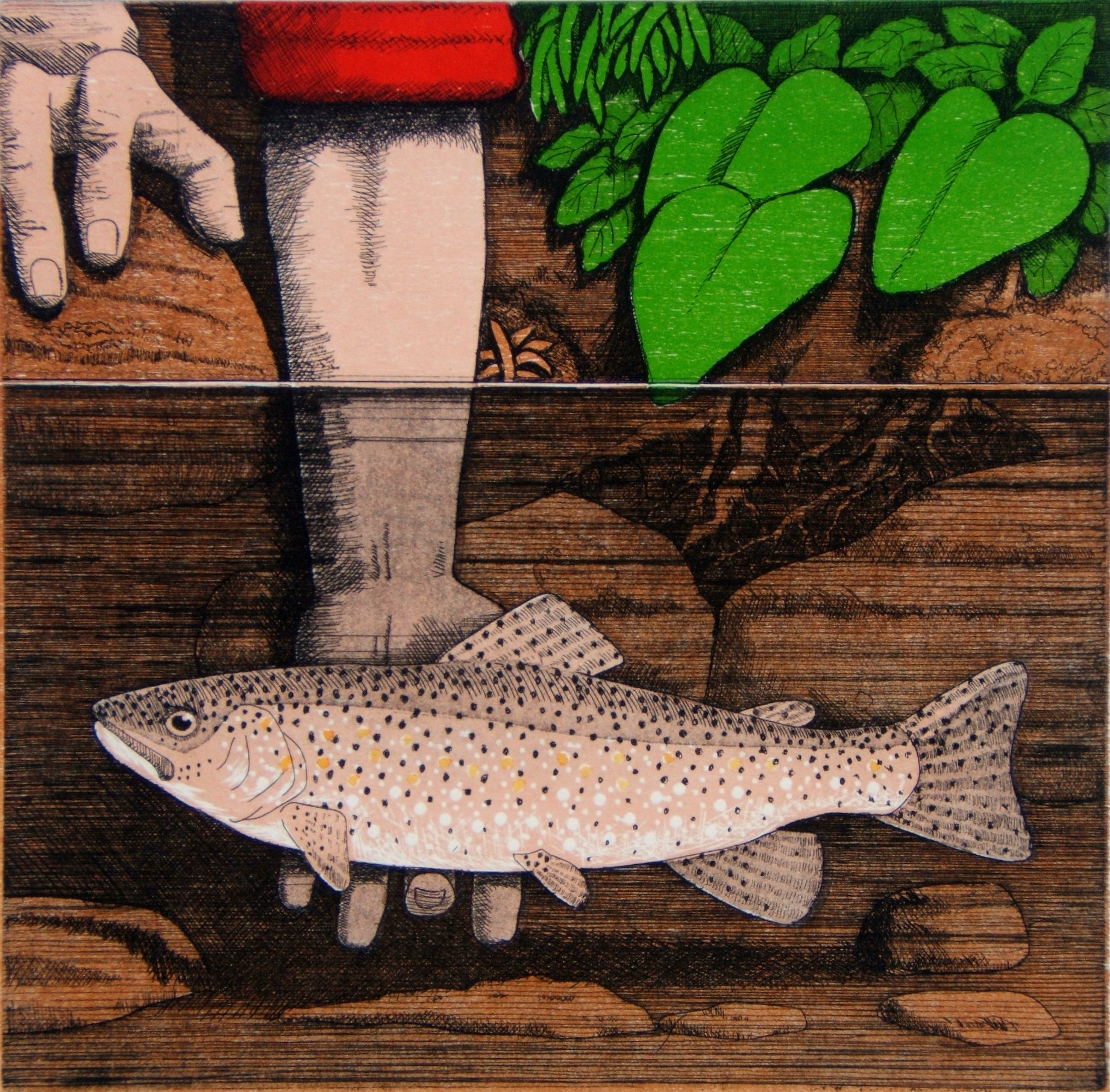 Tickling trout, etching with relief, 30x30 cm.