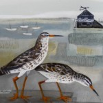 Redshanks and Misty Morning SOLD