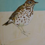 Song Thrush SOLD