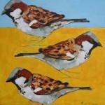 Three Tree Sparrows