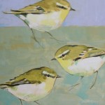 Three Woodwarblers SOLD