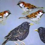 Four Tree Sparrows, Two Starlings