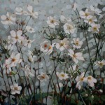 Japanese Anemones SOLD