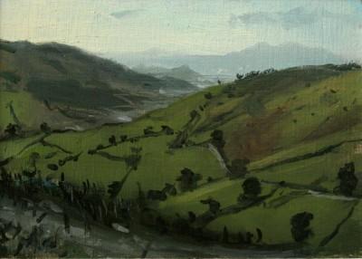 Distant Afon Ffawdwy SOLD