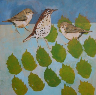 Willow Warblers and Thrush