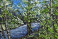 Spring Afon Glaslyn SOLD