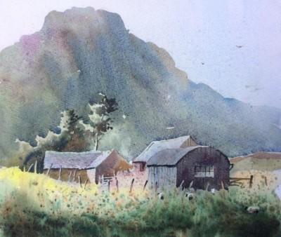Barns on Cadair Idris