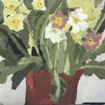 Pastel Primula